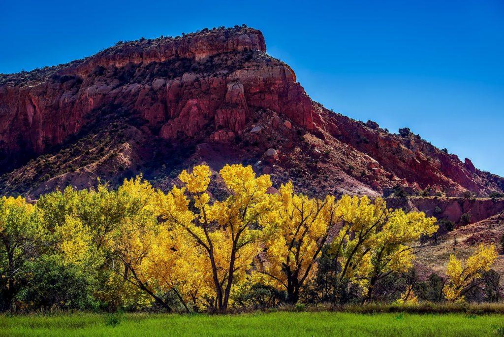 New Mexico fall